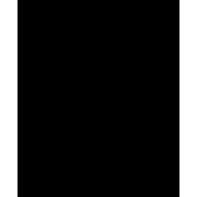 icon-180
